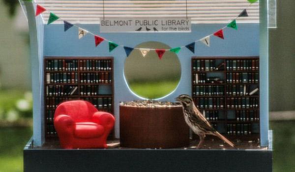 biblioteka-dla-ptakow-1