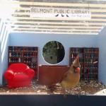 biblioteka-dla-ptakow-2